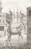 Turkish Dervish, distributing water to the Moslems of Constantinople (Turkey)