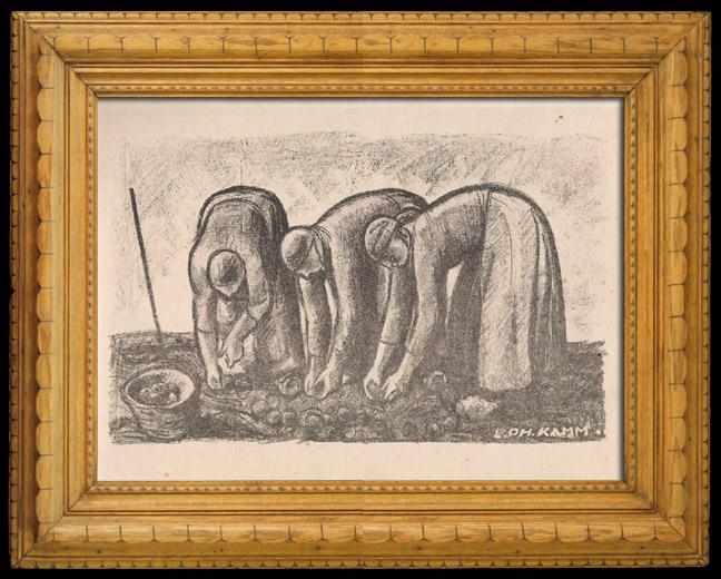 Grabados & Dibujos Antiguos   Mujeres que Recogen las Patatas (Alsacia - Francia)   Litografía   1920