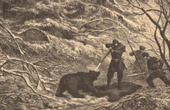 Fishing and Hunting - Emperor of Russia - Bear Hunting
