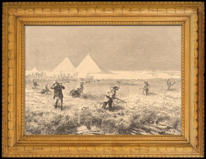 Gravures Anciennes & Dessins | Chasse et Pêche - Egypte - Pyramides - Oiseaux - Chasse aux Cailles | Gravure sur bois | 1880