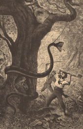 Monster - Mythology - The Fight against a Giant Snake