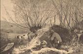 Stich von Fischen und Jagen - Jagdszene - Vogel - Ente - Stockente - Affut