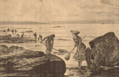 Fishing - Fisherman - Crab - La P�che au Tourteau