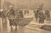 Fishing - Fisherman - Shrimp - La Pêche aux Crevettes