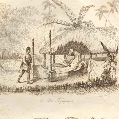 Polynesian Mythology Essay