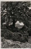 Landscape - Avant la lettre (Th�ophile Narcisse Chauvel)