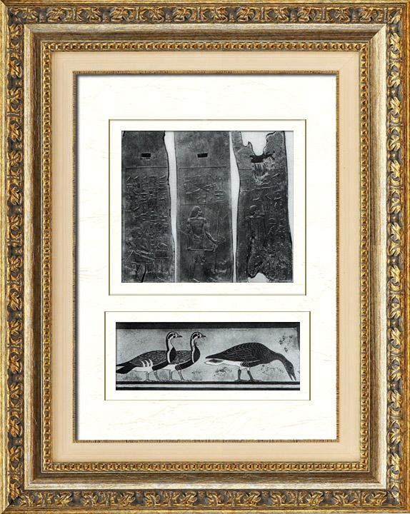Gravures Anciennes & Dessins | Egypte Antique - Egyptologie - Nécropole - Hiéroglyphes Egyptiens dans la Chapelle Funéraire du Mastaba de Hesi à Saqqarah - Sakkarah - Oies de Meidoum | Héliogravure | 1920