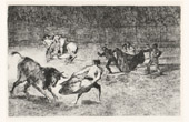 Bullfighting - Tauromachy - Corrida in Spain - Matador - Torero - Bullfighter (Francisco de Goya y Lucientes)