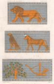 Colored Glazed Brick of the Harem - Ashurnasirpal's Palace (Nimrud)