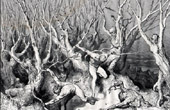 Dante's Hell 20 - Gustave Dor� - The Divine Comedy - Souls who have Committed Suicide are Transformed into Trees