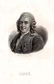 Portrait of Linn� (1707-1778) - Swedish Botanist