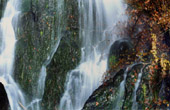 Landscape of Alsace - France - Waterfall - Cascade du Nideck