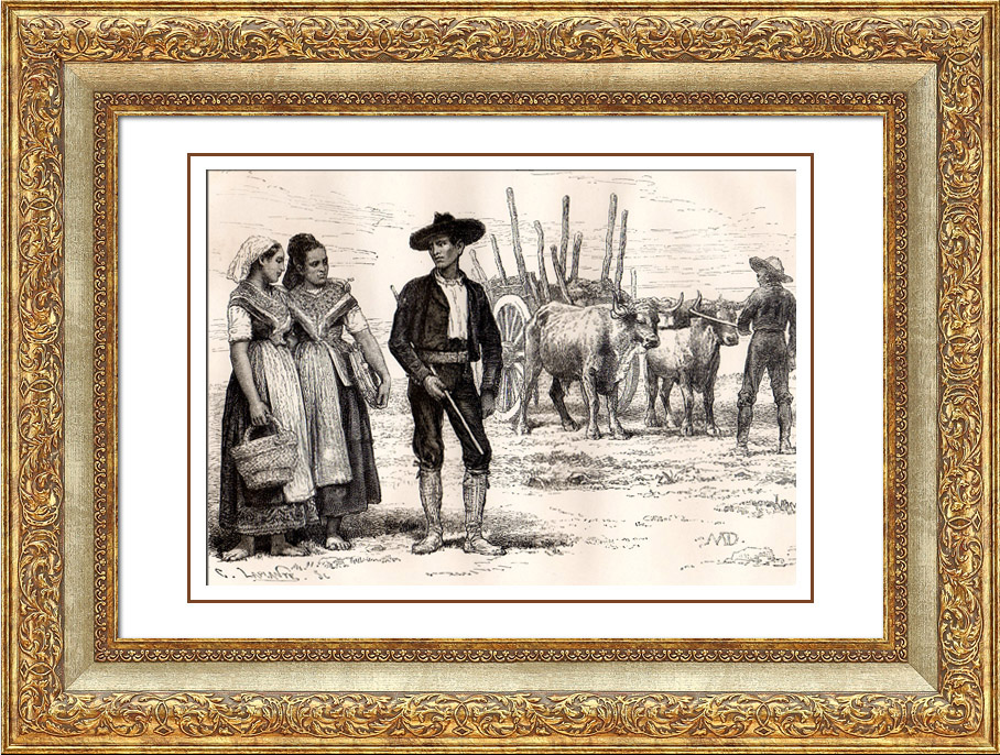 Antique Prints & Drawings | Spanish Typical Costume - Spain - Castile - Peasant of Toledo | Wood engraving | 1875