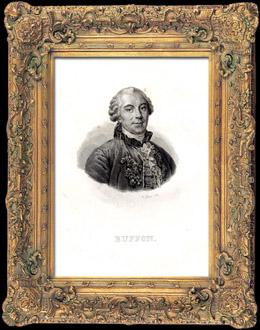 Portr�t von Buffon (1707-1788)