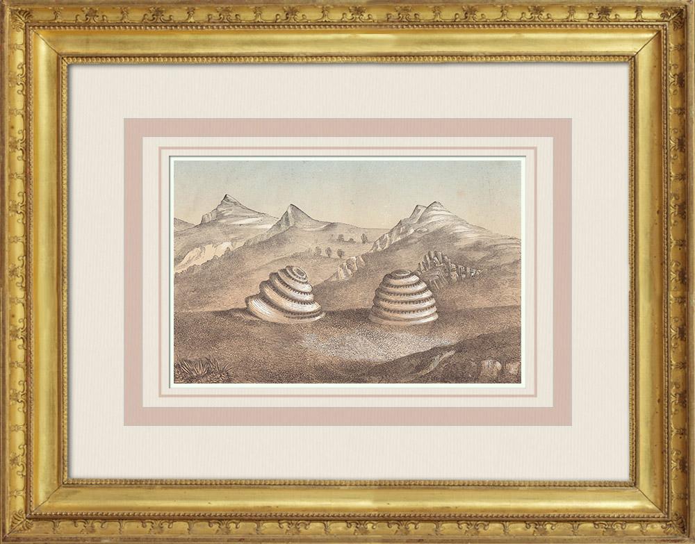 Gravures Anciennes & Dessins   Géologie - Roches volcaniques - Montagnes Wichita - Oklahoma (États-Unis)   Gravure sur bois   1860