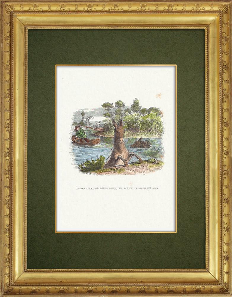 Gravures Anciennes & Dessins | Fables de La Fontaine - L'Ane Chargé d'éponge et l'ane chargé de Sel | Gravure sur bois | 1859
