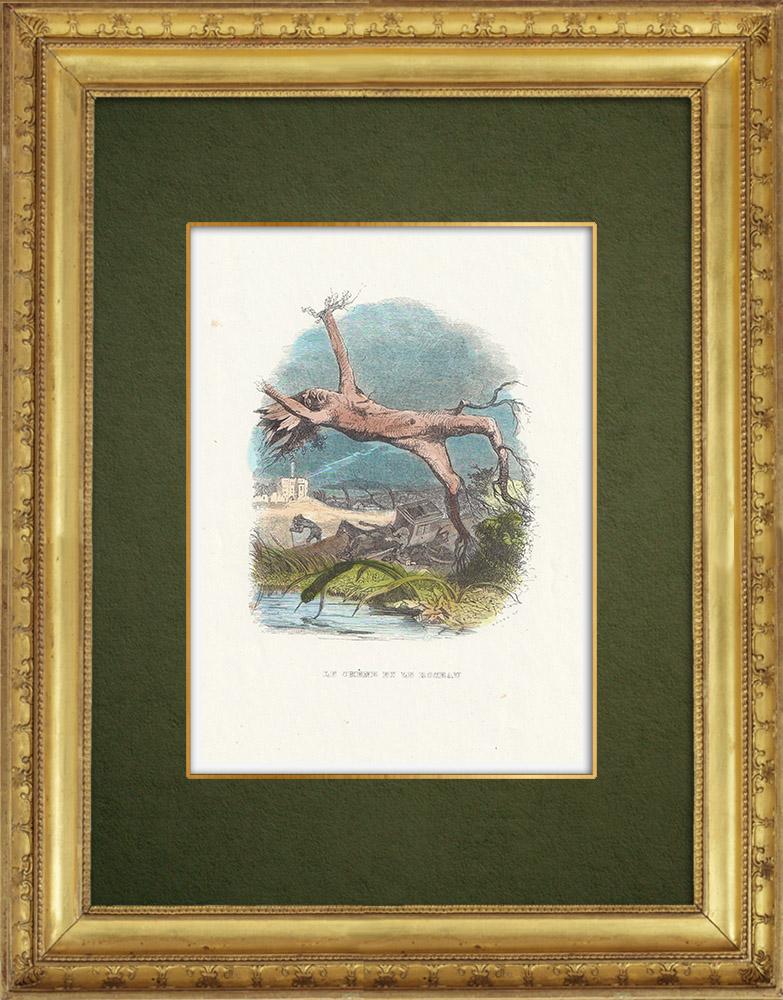 Gravures Anciennes & Dessins | Fables de La Fontaine - Le  Chène et le Roseau | Gravure sur bois | 1859
