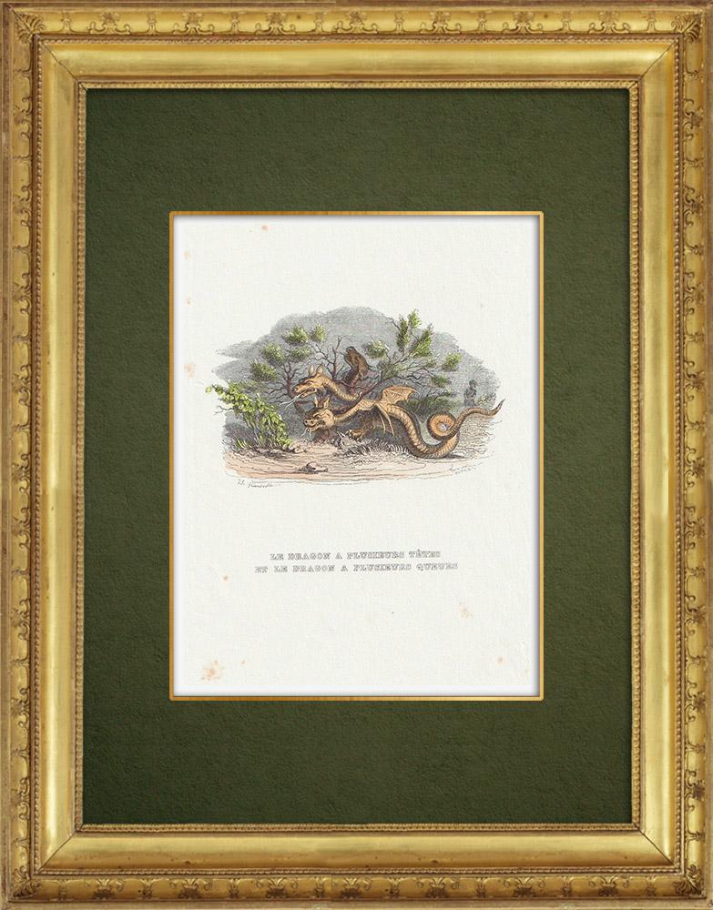 Gravures Anciennes & Dessins | Fables de La Fontaine - Le Dragon à Plusieurs Têtes et le Dragon à Plusieurs Queues | Gravure sur bois | 1859