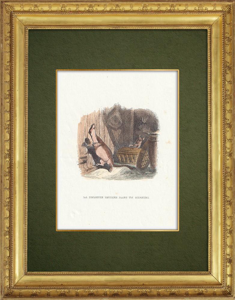 Gravures Anciennes & Dessins   Fables de La Fontaine - La Belette Entrée dans un Grenier   Gravure sur bois   1859