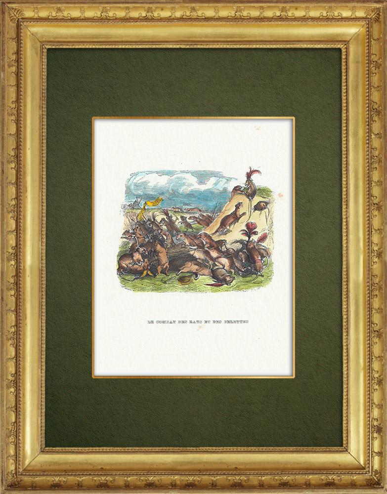 Gravures Anciennes & Dessins | Fables de La Fontaine - Le Combat des Rats et des Belettes | Gravure sur bois | 1859