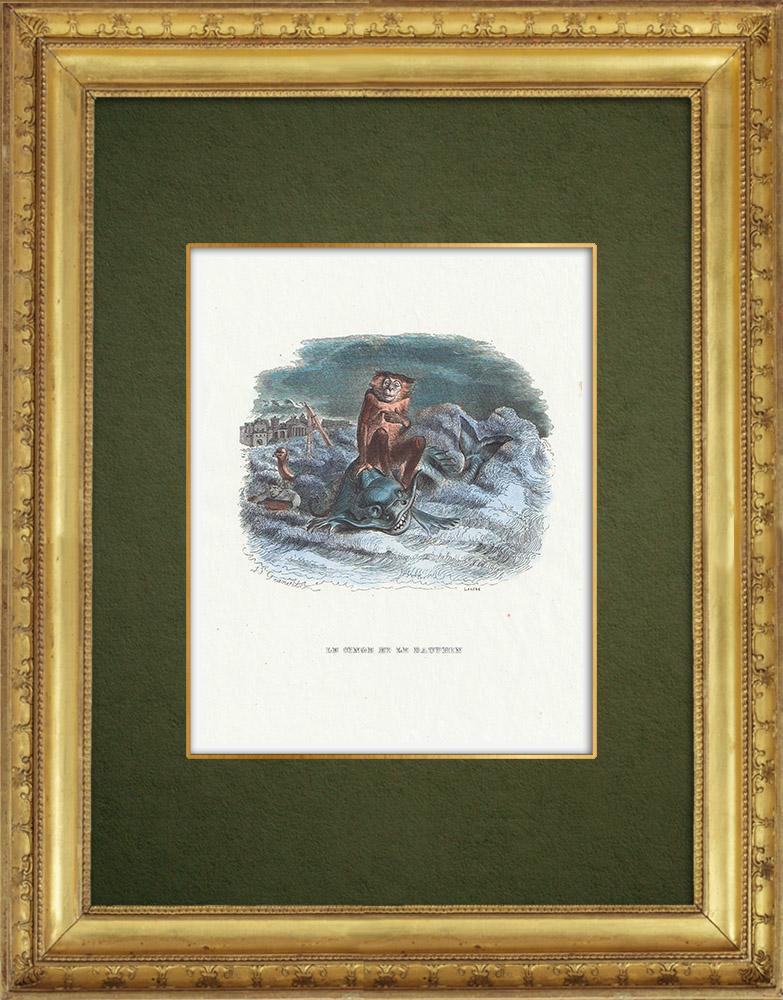 Gravures Anciennes & Dessins   Fables de La Fontaine - Le Singe et le Dauphin   Gravure sur bois   1859