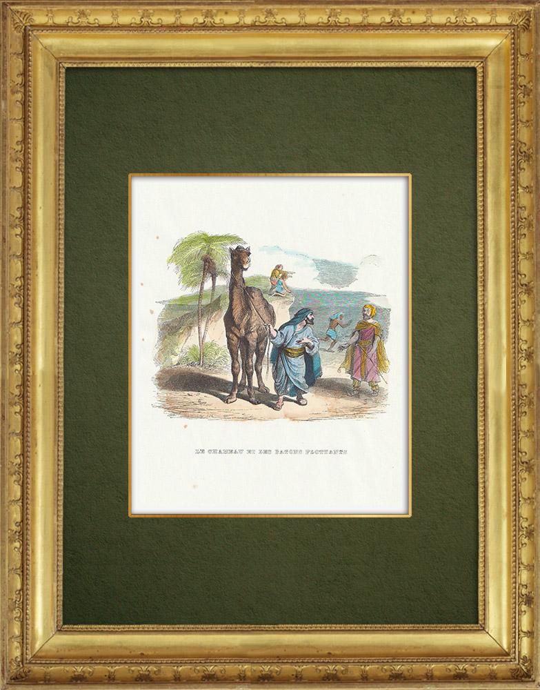 Gravures Anciennes & Dessins | Fables de La Fontaine - Le Chameau et les Batons Flottants | Gravure sur bois | 1859