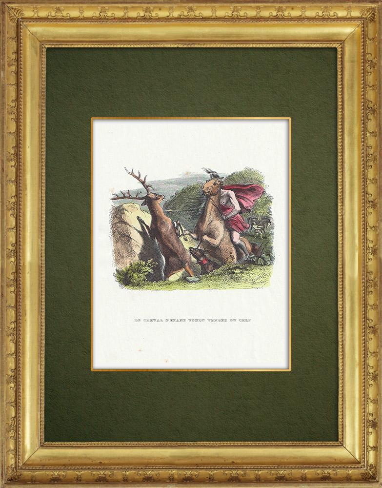 Gravures Anciennes & Dessins | Fables de La Fontaine - Le Cheval s'étant Voulu Venger du Cerf | Gravure sur bois | 1859