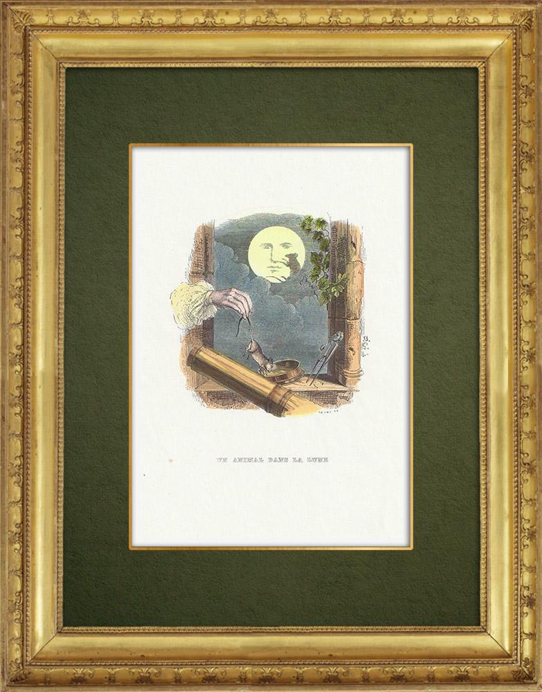 Gravures Anciennes & Dessins | Fables de La Fontaine - Un Animal dans la Lune | Gravure sur bois | 1859