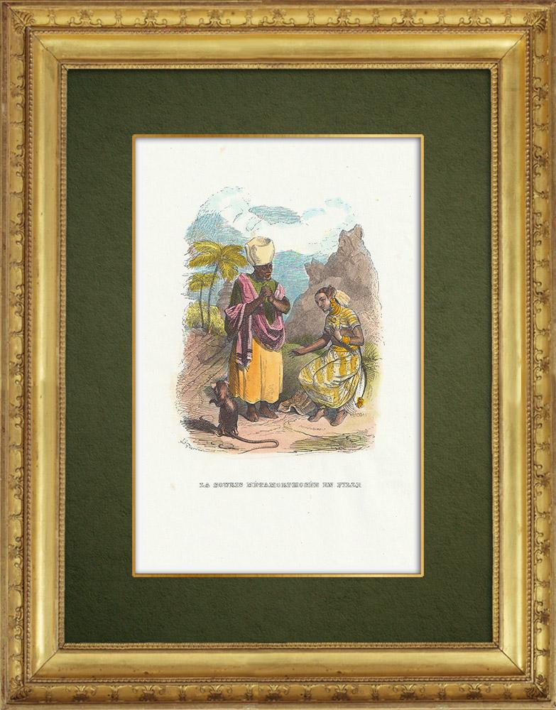 Gravures Anciennes & Dessins | Fables de La Fontaine - La Souris Métamorphosée en Fille | Gravure sur bois | 1859