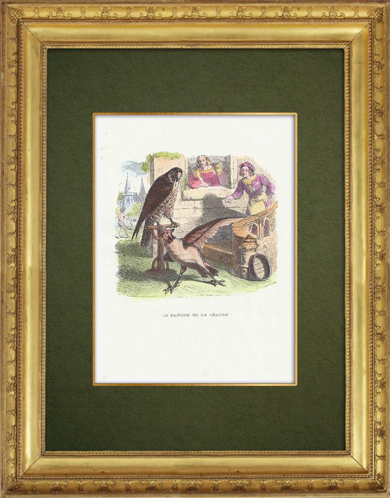 Gravures Anciennes & Dessins   Fables de La Fontaine - Le Faucon et le Chapon   Gravure sur bois   1859