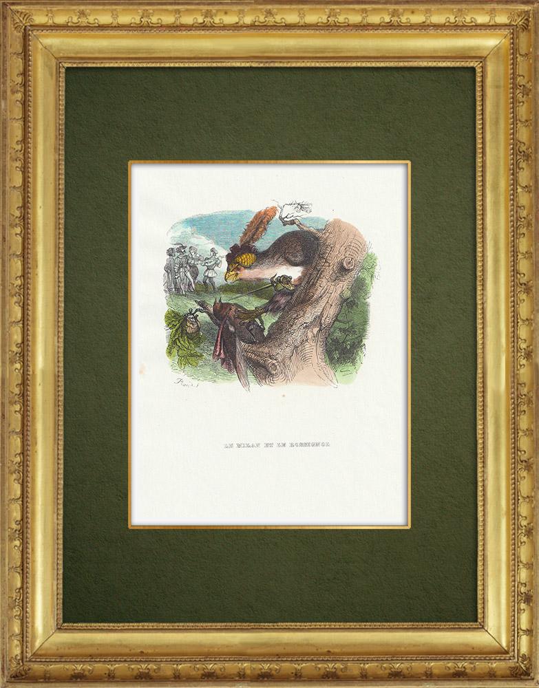 Gravures Anciennes & Dessins | Fables de La Fontaine - Le Milan et le Rossignol | Gravure sur bois | 1859