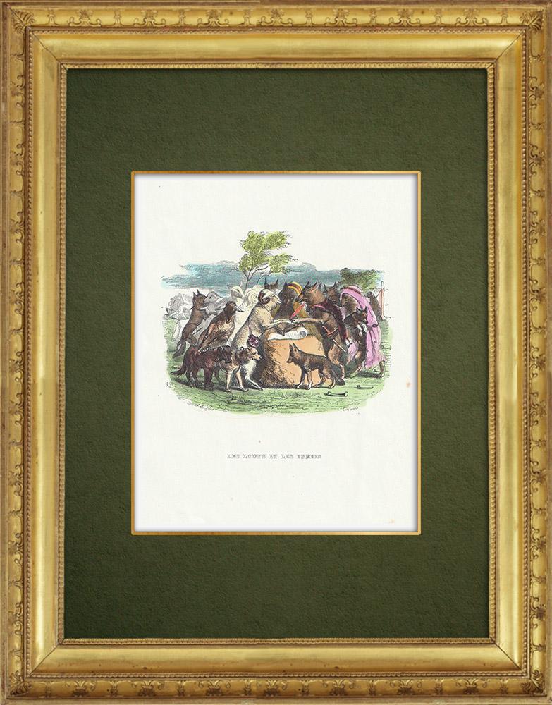 Gravures Anciennes & Dessins   Fables de La Fontaine - Les Loups et les Brebis   Gravure sur bois   1859