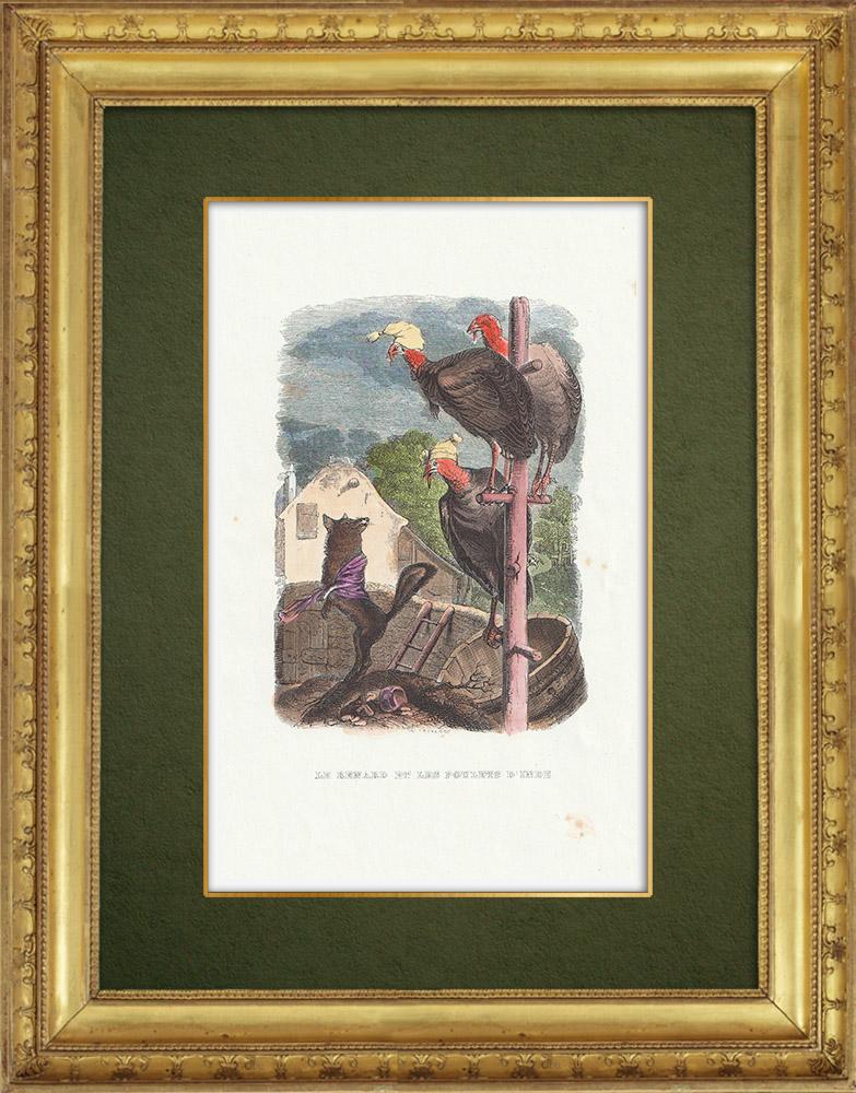 Gravures Anciennes & Dessins | Fables de La Fontaine - Le Renard et les Poulets d'Inde | Gravure sur bois | 1859