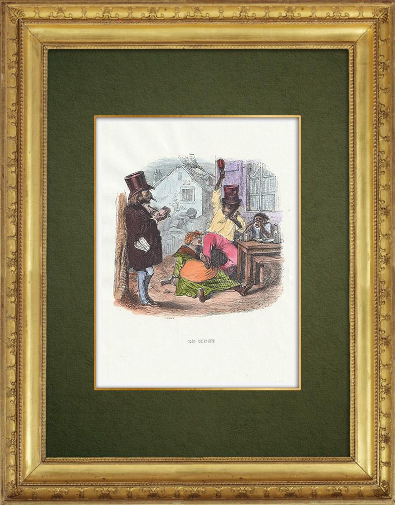 Gravures Anciennes & Dessins   Fables de La Fontaine - Le Singe   Gravure sur bois   1859