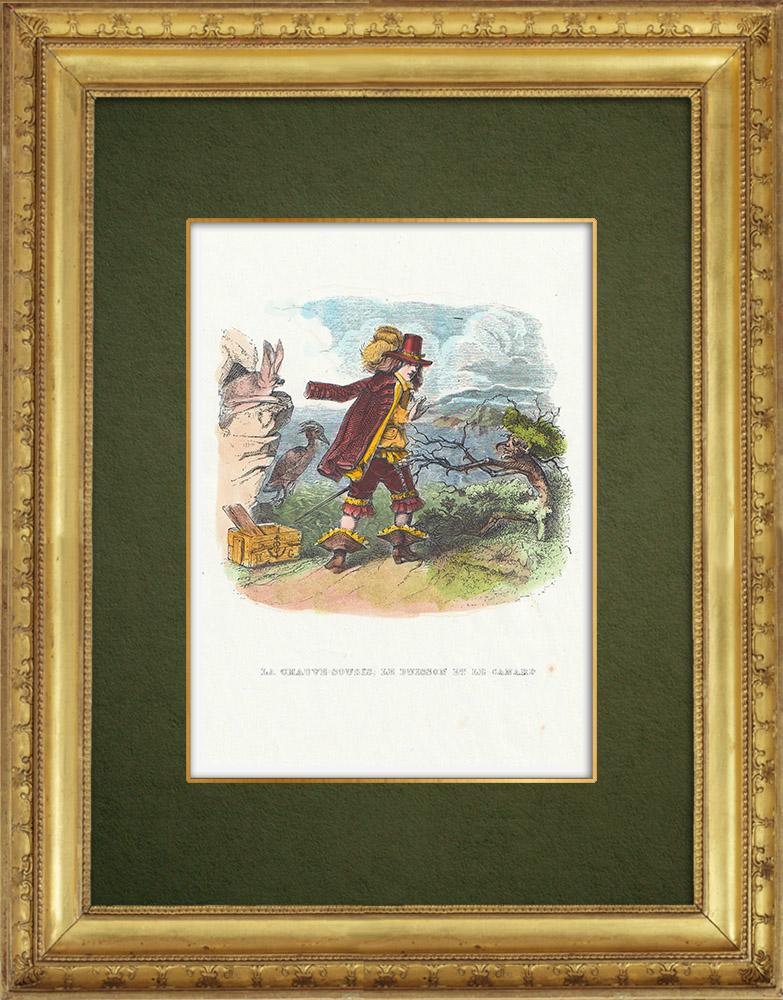 Gravures Anciennes & Dessins | Fables de La Fontaine - La Chauve Souris, le Buisson et le Canard | Gravure sur bois | 1859