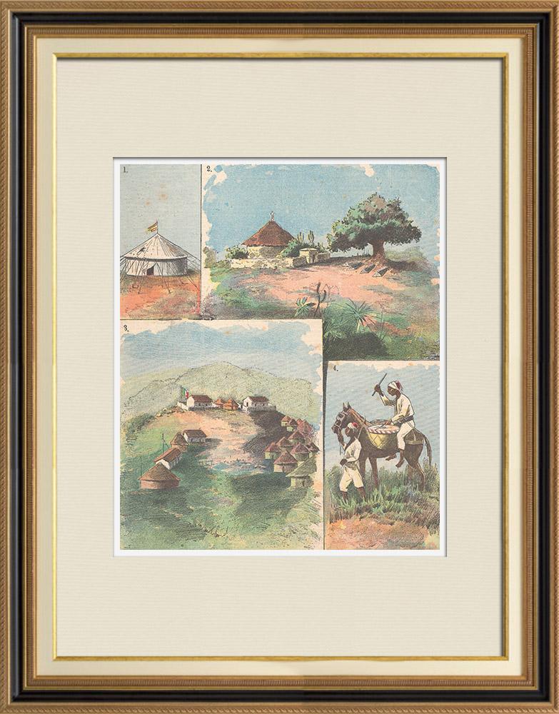 Gravures Anciennes & Dessins   Guerre italo-éthiopienne - Derniers événements en Afrique - 1895   Gravure sur bois   1895