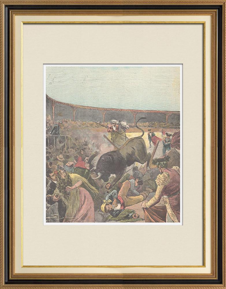 Gravures Anciennes & Dessins | Corrida tragique en Espagne - 1898 | Gravure sur bois | 1898