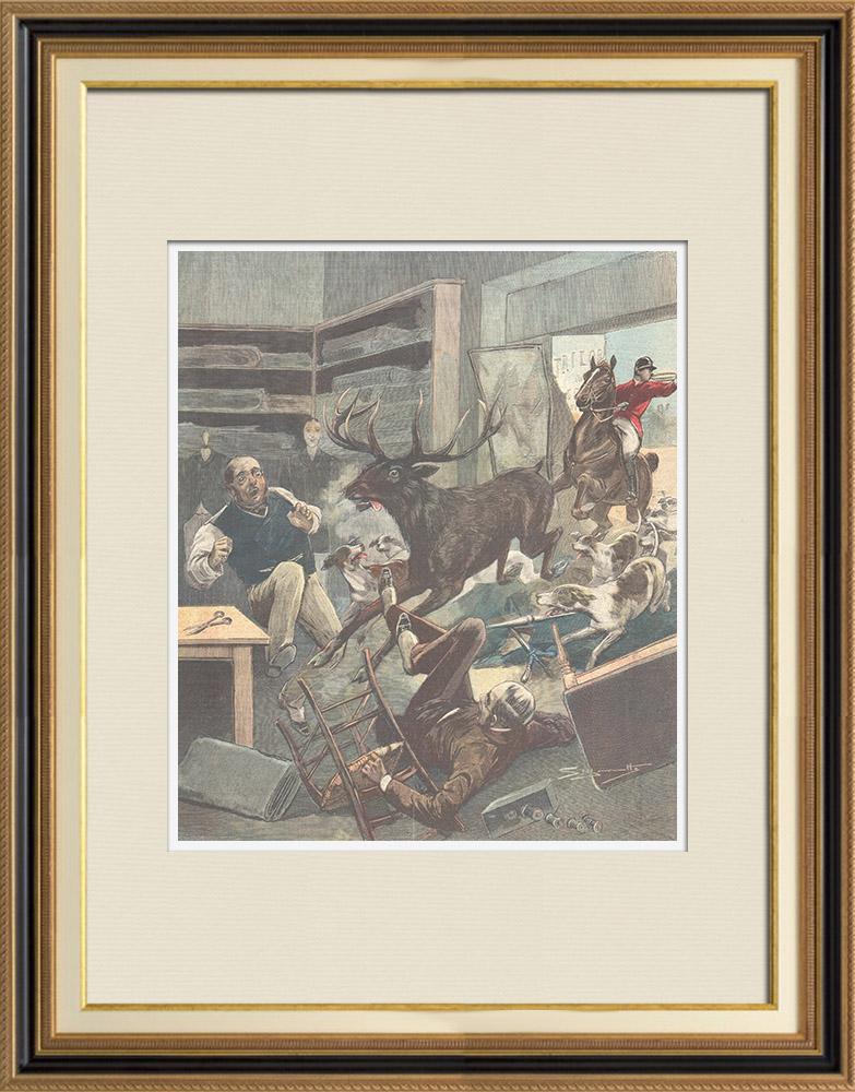 Gravures Anciennes & Dessins | Chasse au cerf dans un magasin à Pitstone - Angleterre - 1896 | Gravure sur bois | 1896