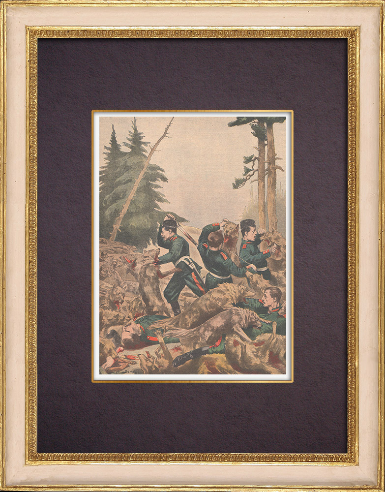 Antique Prints & Drawings | Romanian soldiers devoured by wolves - 1901 | Wood engraving | 1901