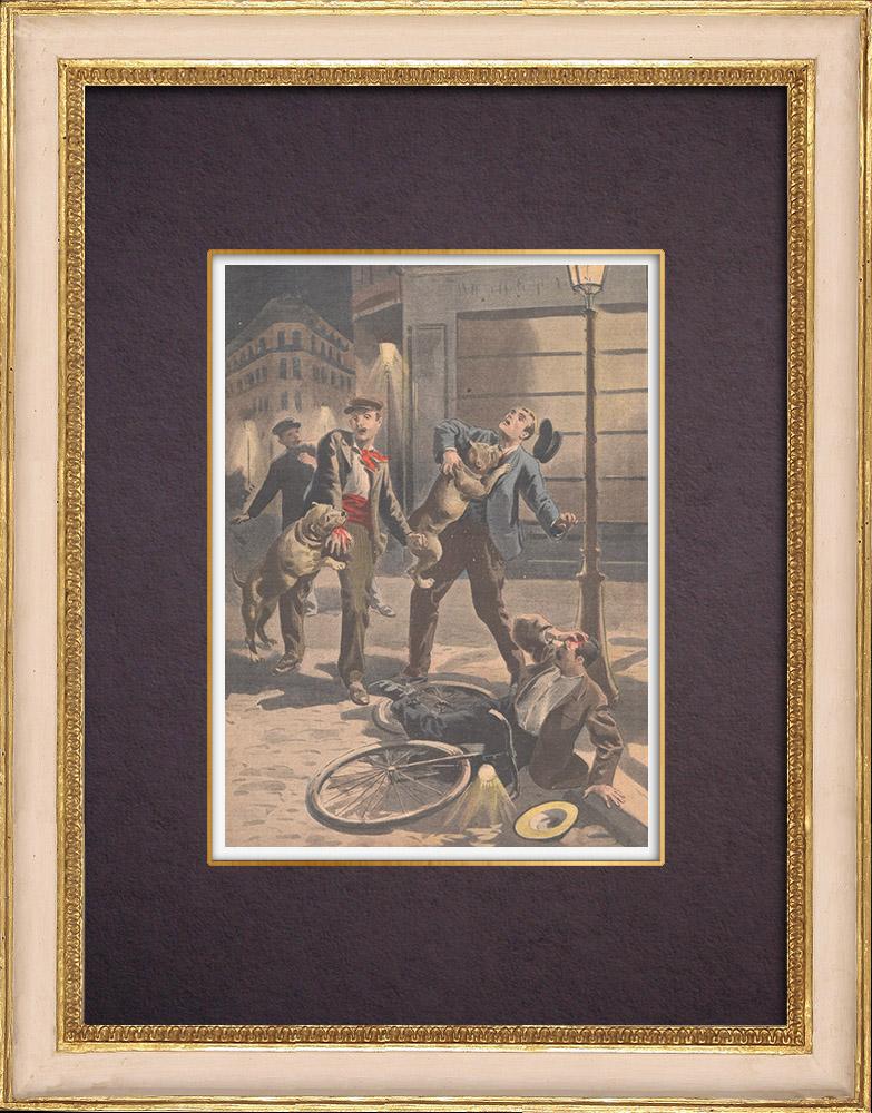Gravures Anciennes & Dessins   Deux chiens sauvent leur maitre attaqué par des brigands à Paris - 1901   Gravure sur bois   1901