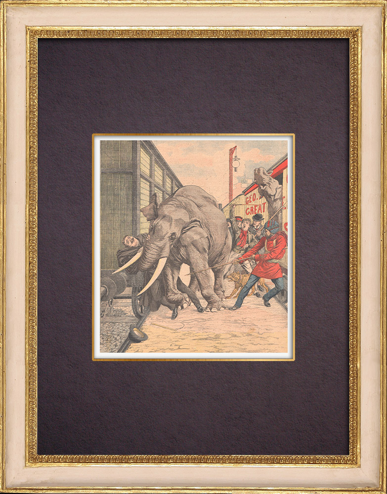 Antique Prints & Drawings | An elephant tamer killed by one of them - England - 1904 | Wood engraving | 1904