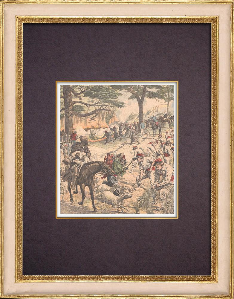 Gravures Anciennes & Dessins | Incendies dans les forêts d'Algérie - Afrique du Nord - 1904 | Gravure sur bois | 1904