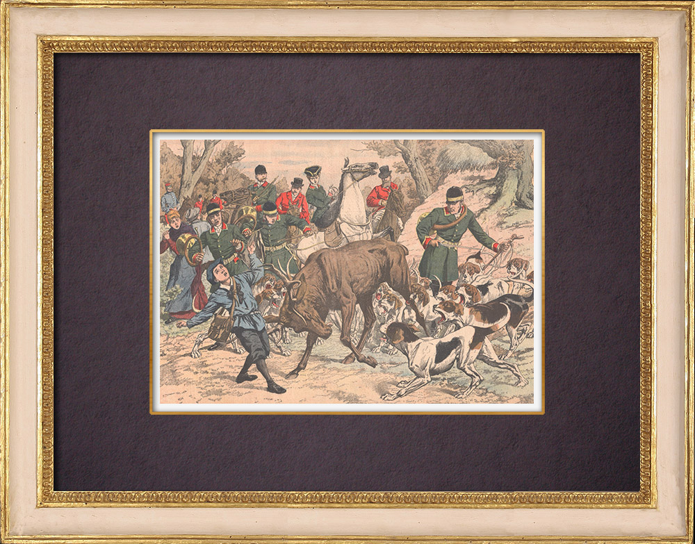 Antique Prints & Drawings   Hunting - A child wounded by a deer in Chantilly forest - France - 1904   Wood engraving   1904