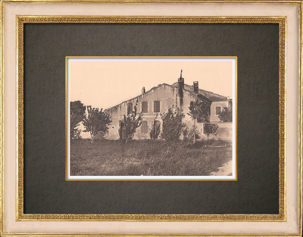Antique Prints & Drawings | A mas in Fontvieille - Provence (France) | Phototypie | 1928