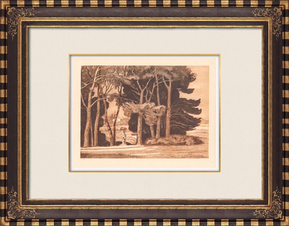 Grabados & Dibujos Antiguos | Pinède de Bel-Air - Aix-en-Provence - Bouches-du-Rhone - Bocas del Ródano (Francia) | Grabado calcográfico | 1943