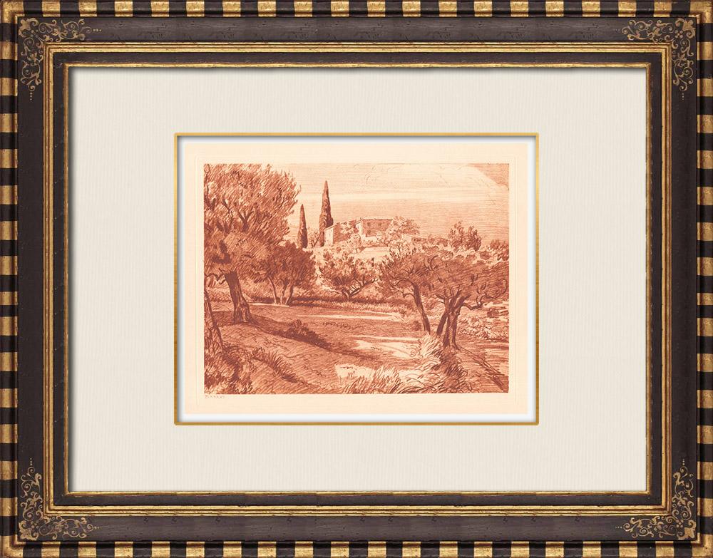 Gravures Anciennes & Dessins | Champs d'Oliviers près de Sanary - Var - Provence-Alpes-Côte d'Azur (France) | Gravure sur cuivre | 1943