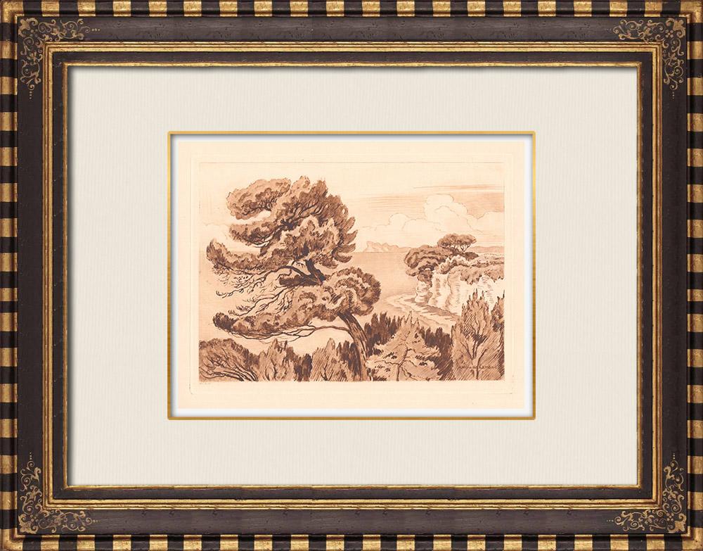 Gravures Anciennes & Dessins | Paysage de La Ciotat - Méditerranée - Pins - Provence-Alpes-Côte d'Azur (France) | Gravure sur cuivre | 1943