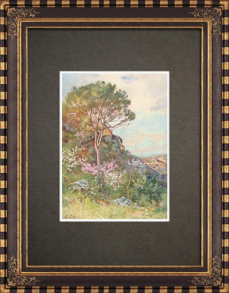 Grabados & Dibujos Antiguos | Paisaje cerca de Galatafimi - Trapani - Sicilia (Italia) | Estampa | 1911