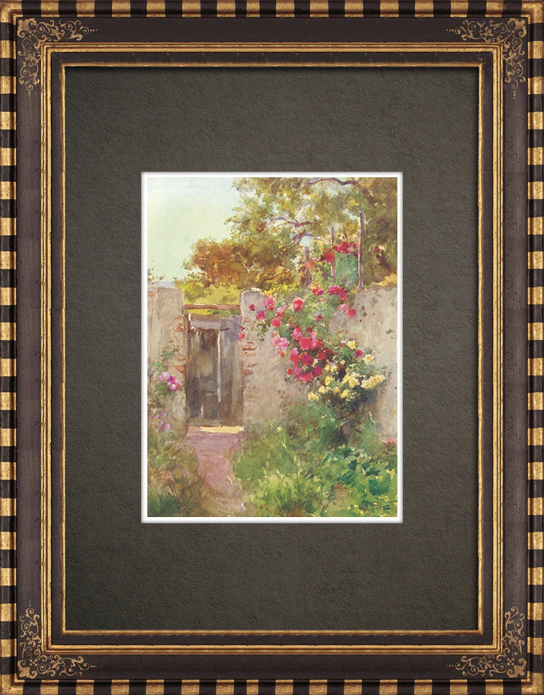Antique Prints & Drawings | A garden in Taormina - Sicily (Italy) | Print | 1911