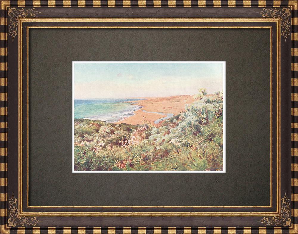 Antique Prints & Drawings | Mediterranean coast at Selinunte - Trapani - Sicily (Italy) | Print | 1911